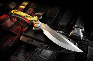 Spartan Blades Nyx Fixed Blade Fighting Survival Knife with Kydex Sheath
