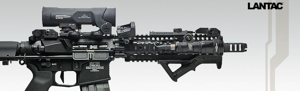 Ar 15 Custom Assault Rifle Builder Aegis Gears